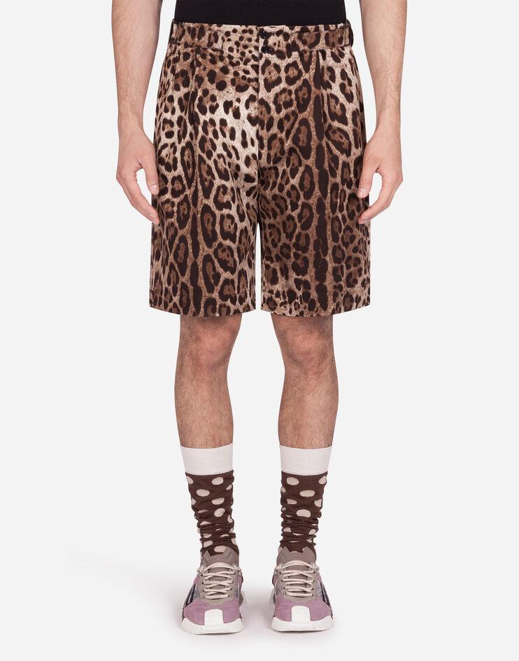 Bermuda In Cotone Stretch Stampa Leopardo - Dolce & Gabbana