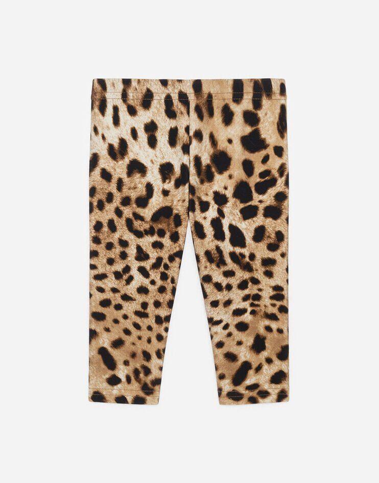 Leggings In Interlock Stampa Leo - Dolce & Gabbana Junior